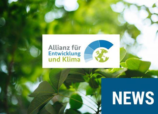 allianz-entwicklung-umwelt